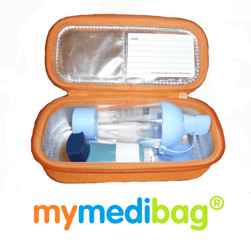 large insulated EpiPen case medication bag