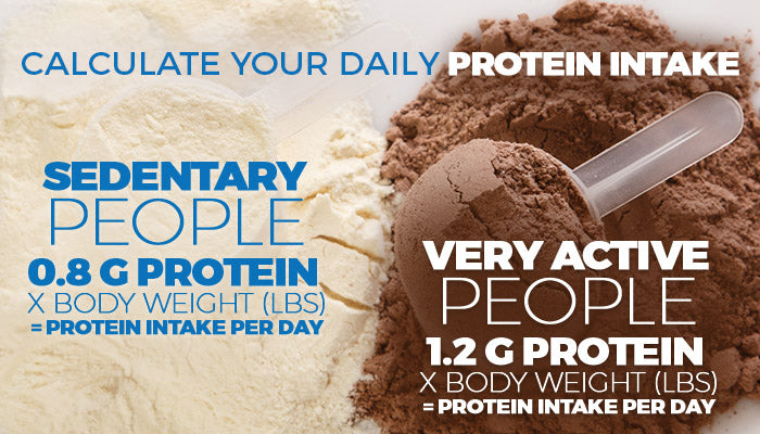 calculate daily protein intake graphic