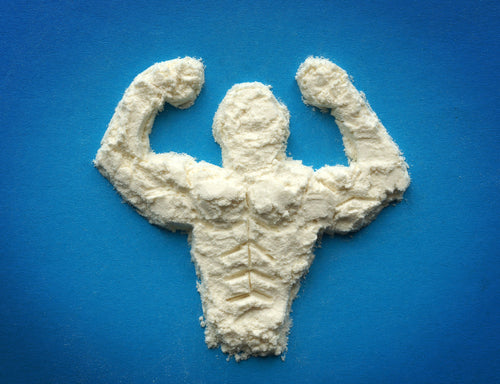 male body protein powder