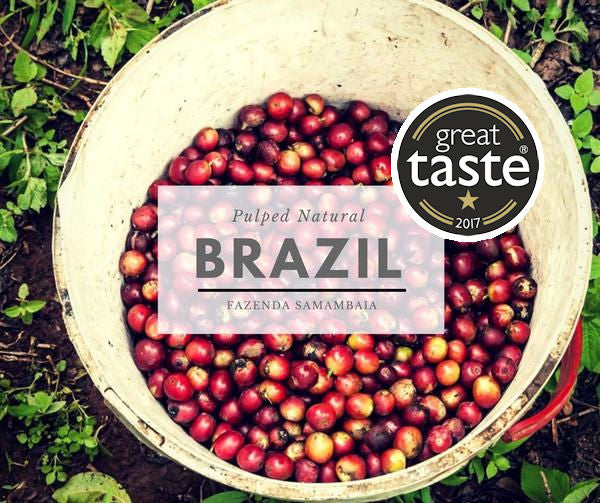 ANVIL BRAZIL FAZENDA SAMAMBAIA - 1* Star Great Taste Award Winner 2017