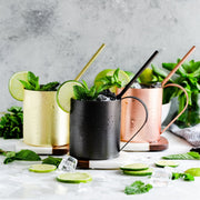 Moscow Mule Mug & Straw Set, Stainless Steel (Space Grey)