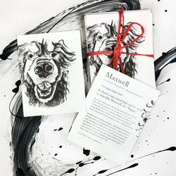 Maxwell (dog): Blank note cards