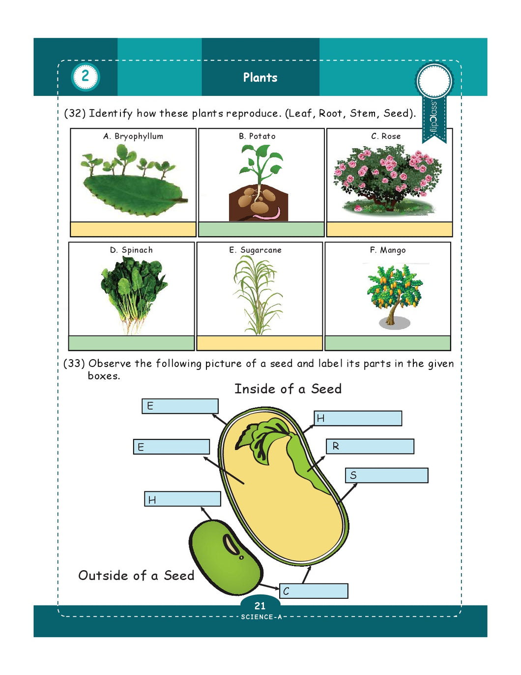 Genius Kids Worksheets For Class 5 5th Grade Math