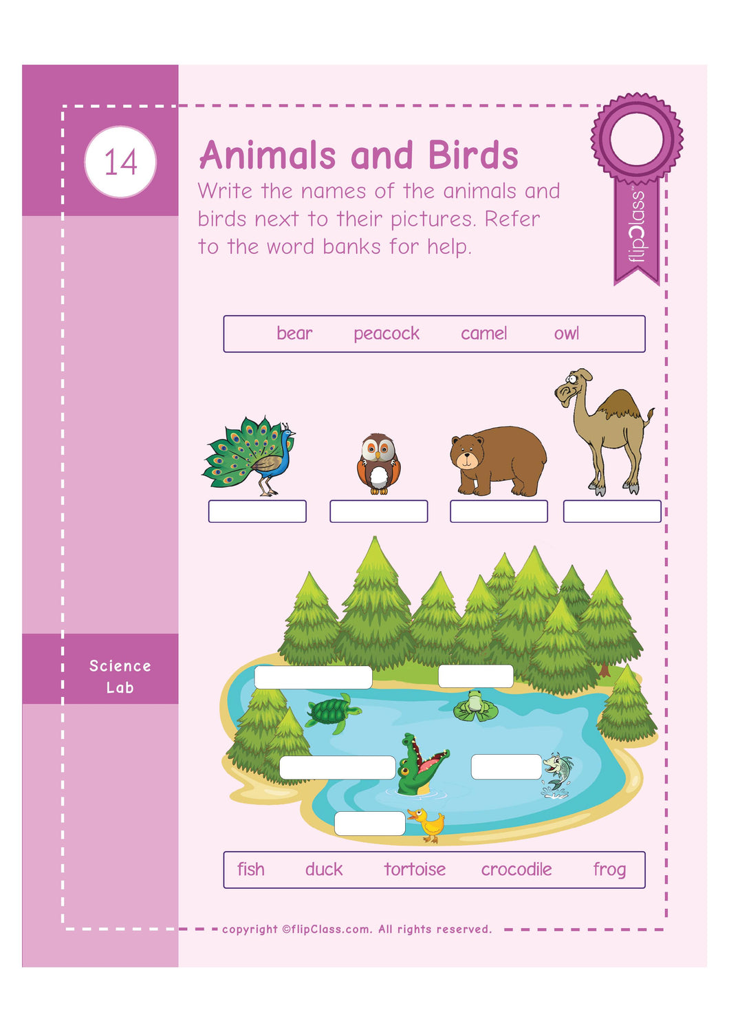 Genius Kids Worksheets for Ukg - Set of 8 Workbooks for UKG, KG-2 ...