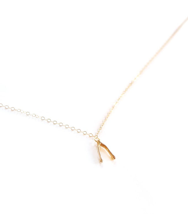 Dainty Gold Wishbone Necklace