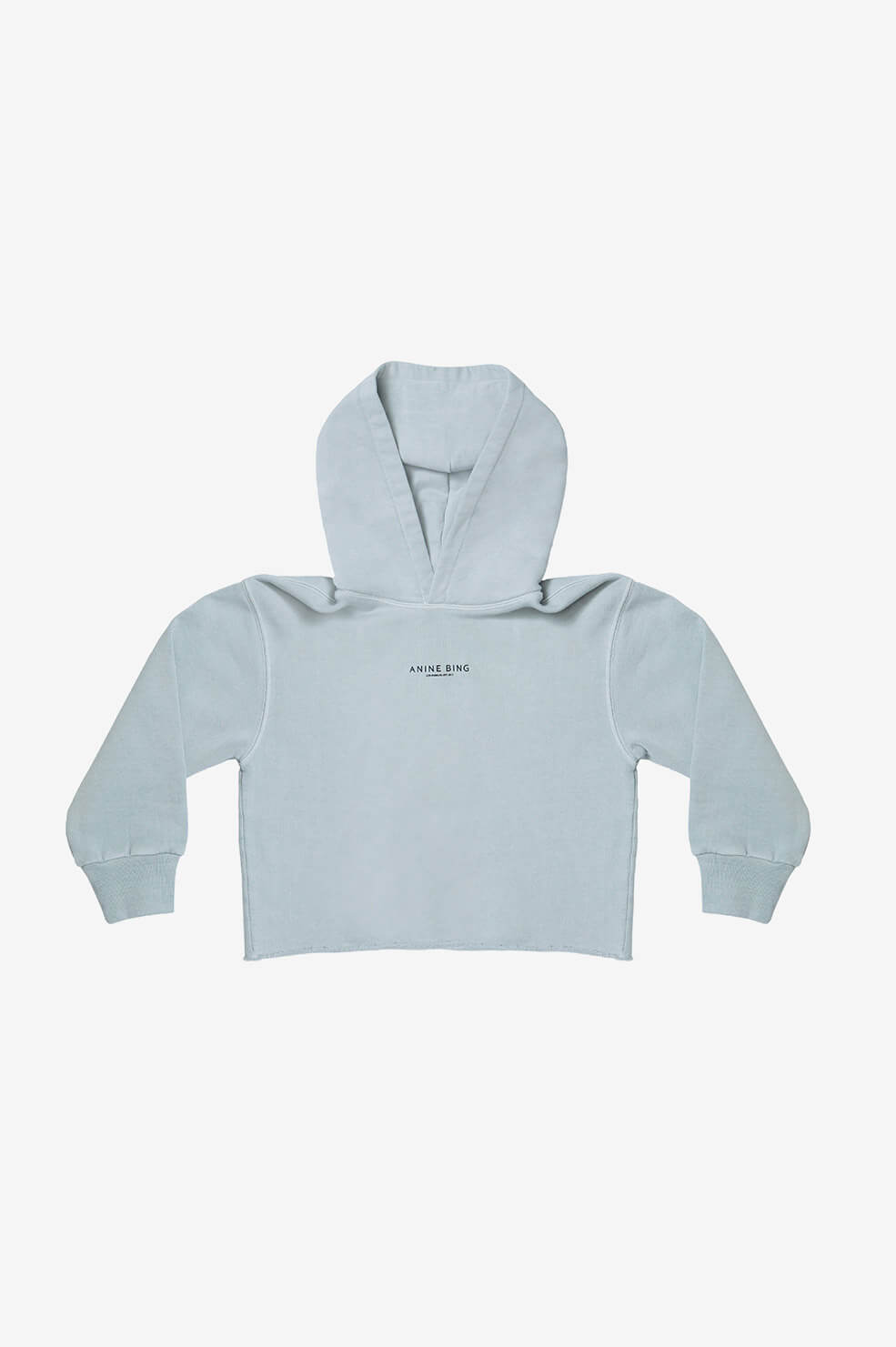 Mini Jamie Hoodie Sweatshirt - Dusty Mint