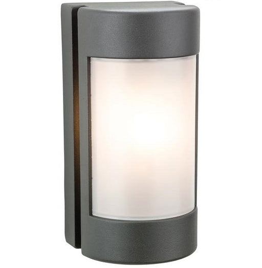 Graphite Arena Wall Light