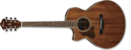 IBANEZ LEFT HANDED AE245L Natural
