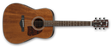 Ibanez Artwood AW54 Open Pore Natural