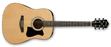 IBANEZ IJV50 Dreadnought Acoustic Pack
