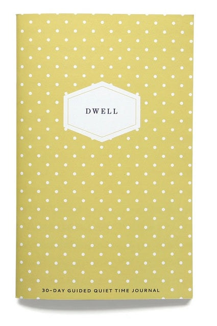 Dwell Journal (More Color Options)
