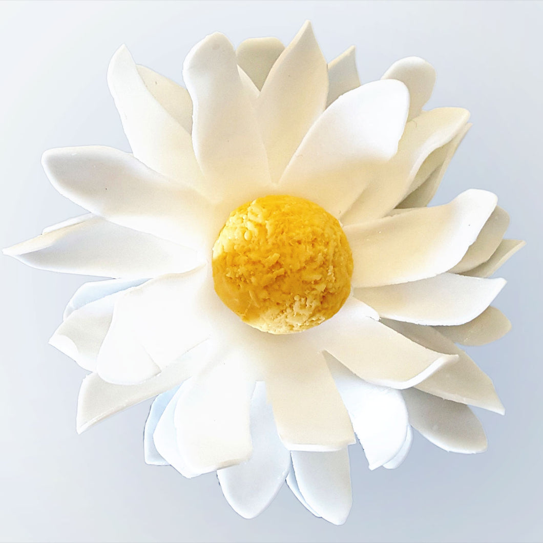 White Daisy Flower (Unscented)