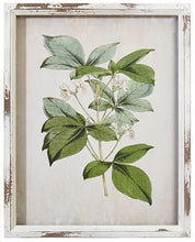 Load image into Gallery viewer, White Distress Framed Floral Art