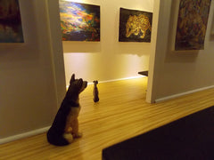 Dogs look at tiger painting