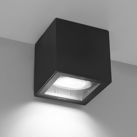 Artemide Lighting Basolo Outdoor Ceiling/Floor Light