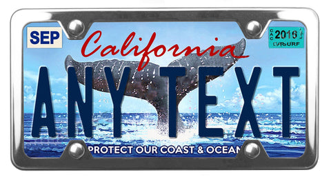 California Whale Tale license plate inside of StreamlineJK shiny polished Stainless Steel license plate frame
