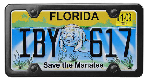 Florida specialty license plate with Save the Manatee on it, inside of StreamlineJK Black Stainless Steel license plate frame
