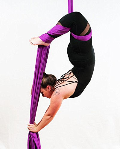 F.Life Aerial Silks Standard Kit Pilates Yoga Flying Swing Aerial Yoga Hammock Silk Fabric for Yoga (10 Yards of Fabric) (Purple)