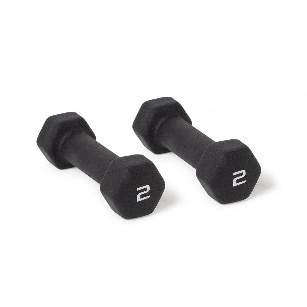 Flywheel Dumbbells 2 lbs Pair