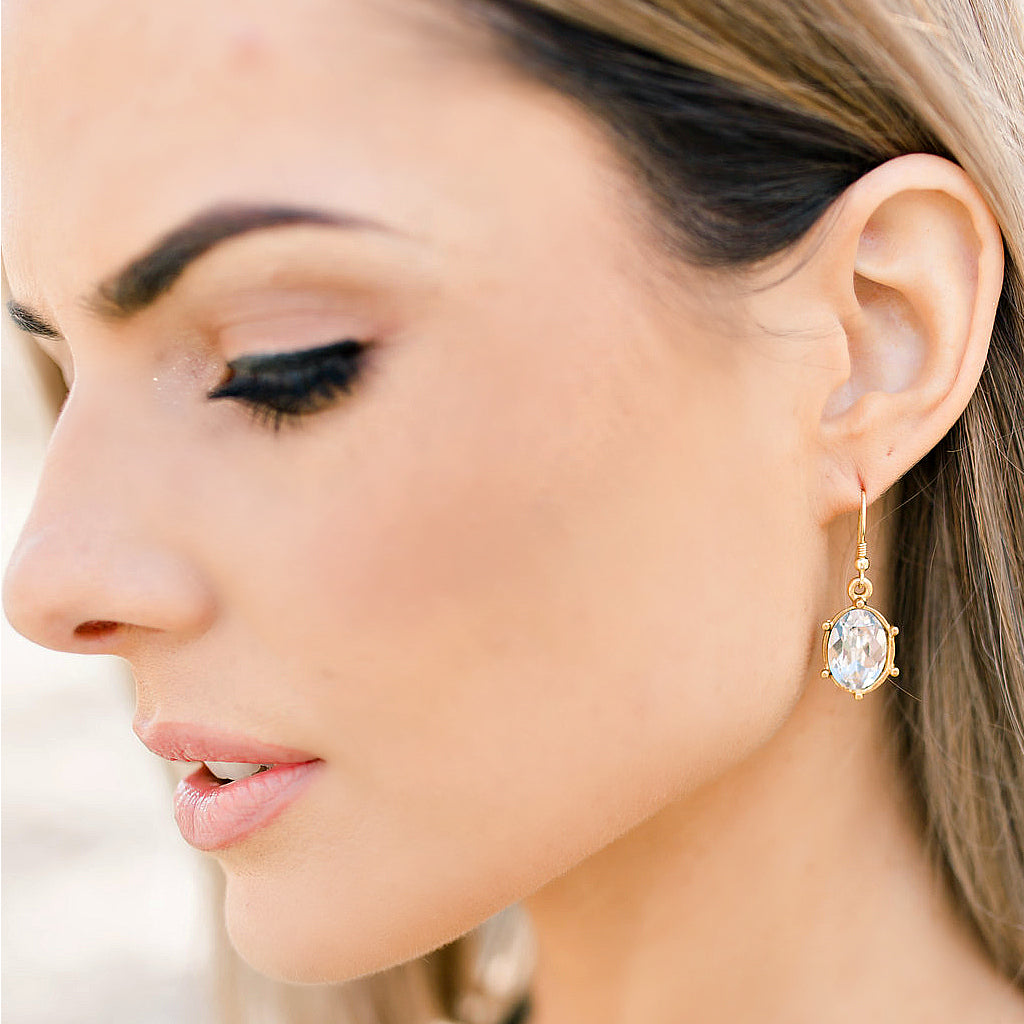 "EXCLUSIVE ""First Lady's Luncheon"" Swarovski Crystal Drop Earrings - Glitzy Bella"