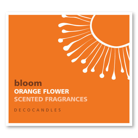 Bloom / Orange Flower