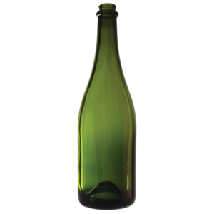 Champagne bottles - 750ml - Punted