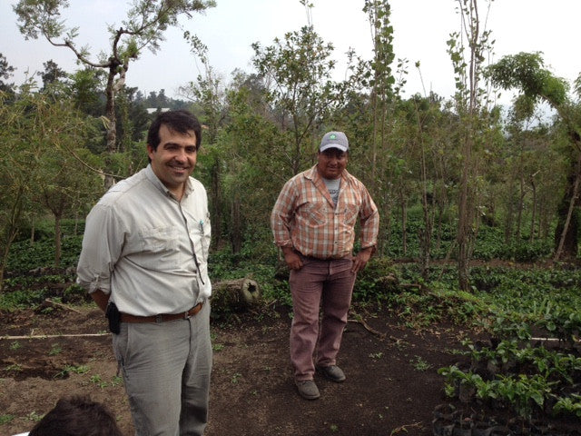 GUATEMALA LA SOLEDAD: OUR FIRST DIRECTLY SOURCED COFFEE & THE STORY BEHIND IT