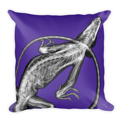 Steve Miller Pillow - Purple / Iguana