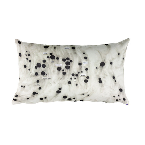Jessica Rankin Pillow II - Long