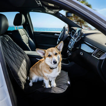 BarksBar Pet Front Seat Cover - Universal Fit