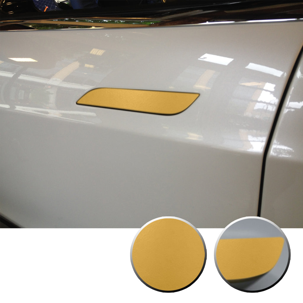 Tesla Model S Door Delete