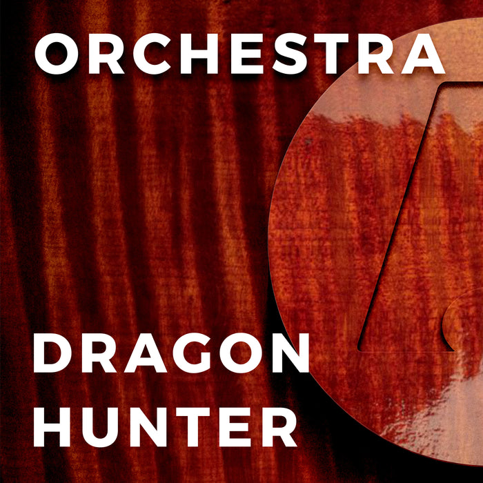 Dragon Hunter (Richard Meyer)