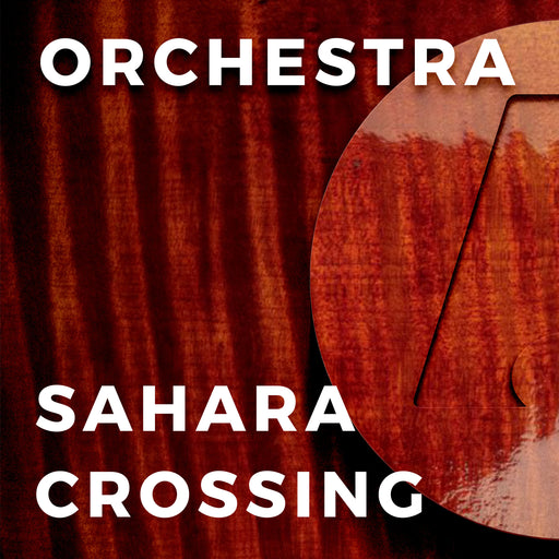 Sahara Crossing (Richard Meyer)
