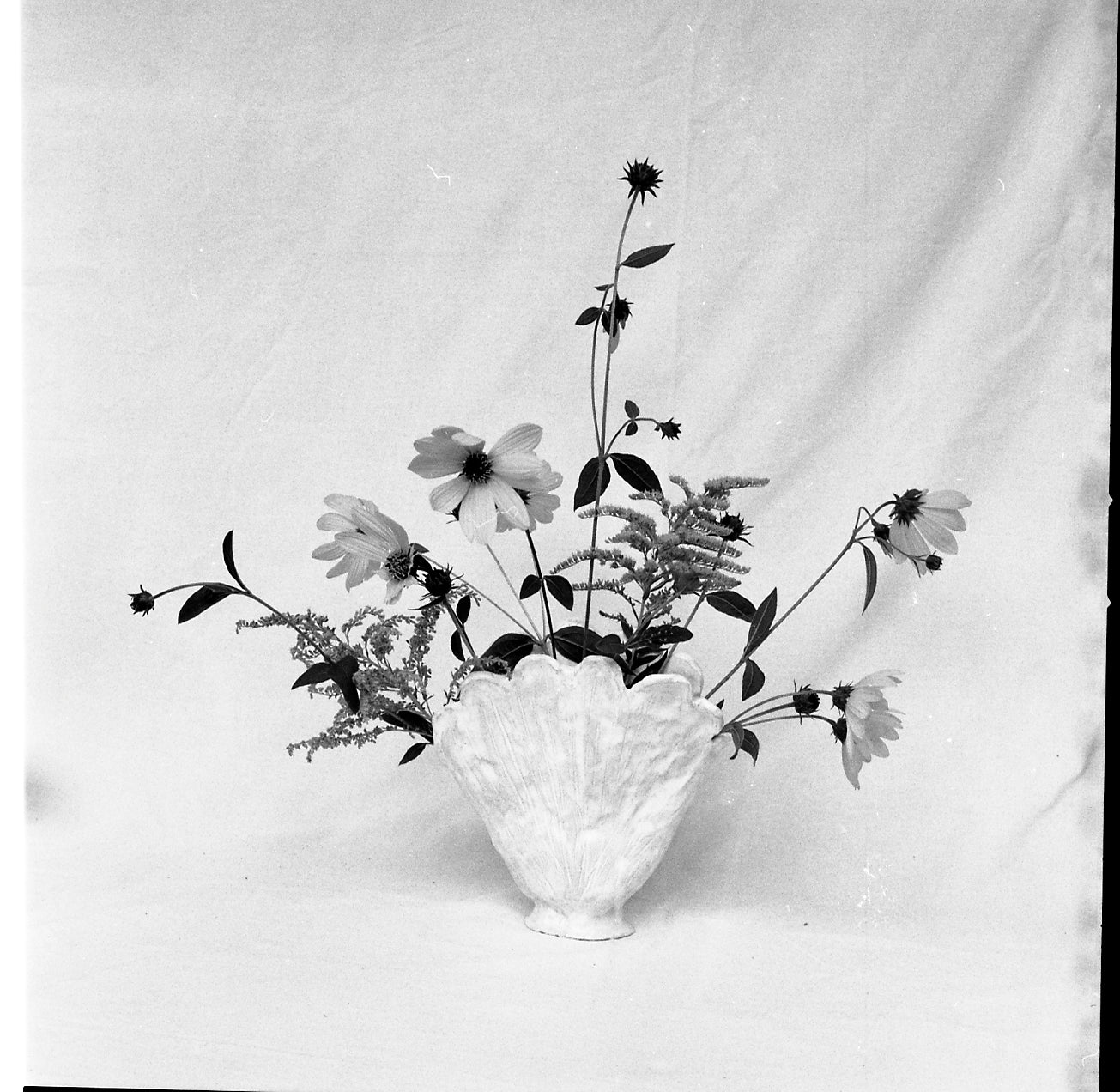 Black and white film photo of flowers in a white vase by Lottie Hampson.
