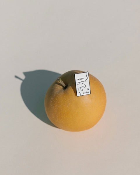 An enamel Canyon Coffee pin sitting on an orange.