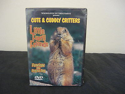 Cute & Cuddly Critters: Little Furry Friends (DVD) Education General Interest