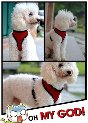 Breathable Dog Harness - Camping Gear and Gadgets - Camp Planning