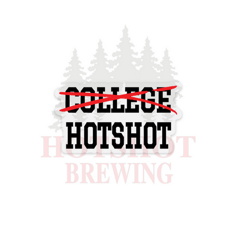 F*CK COLLEGE/I BECAME A HOTSHOT - STICKER