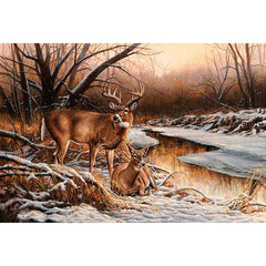 Winter Retreat - Deer;  Wrapped Canvas by Rosemary Millette - F593856465