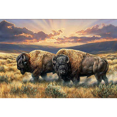 Dusty Plains - Bison;  Framed Gallery Canvas by Rosemary Millette - F593130469G