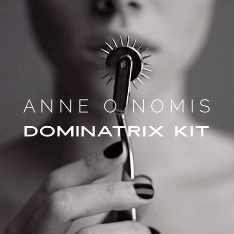 Anne O Nomis Portable 13 Piece Dominatrix Kit