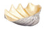 Geneva-Ceramic-Shell-Decorative-Bowl