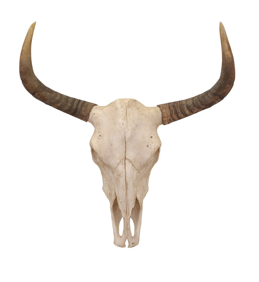 Bull-Skull-Wall-Decor