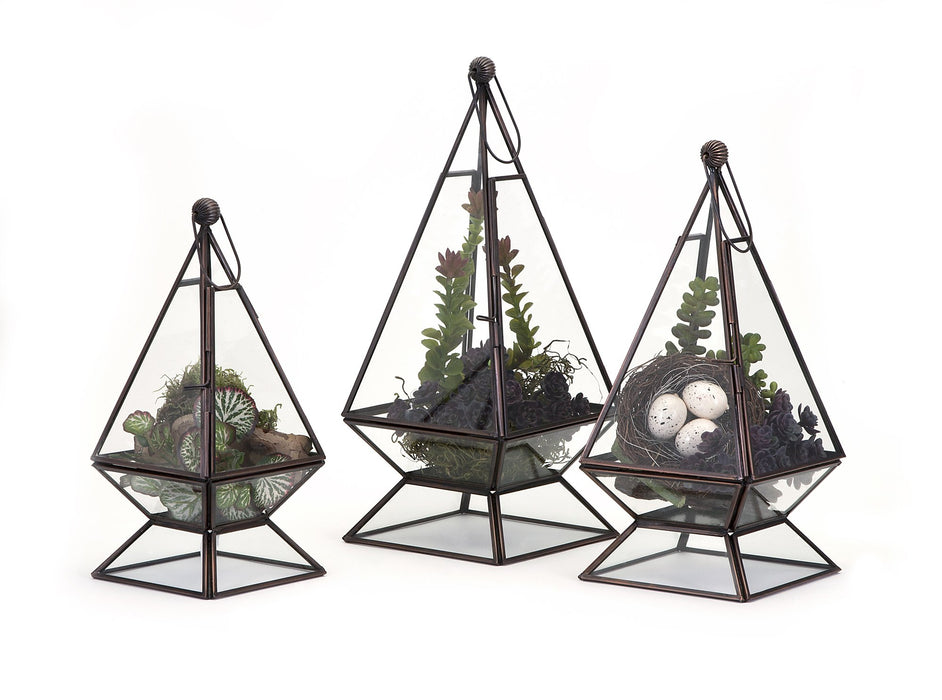 Laurel-Terrariums