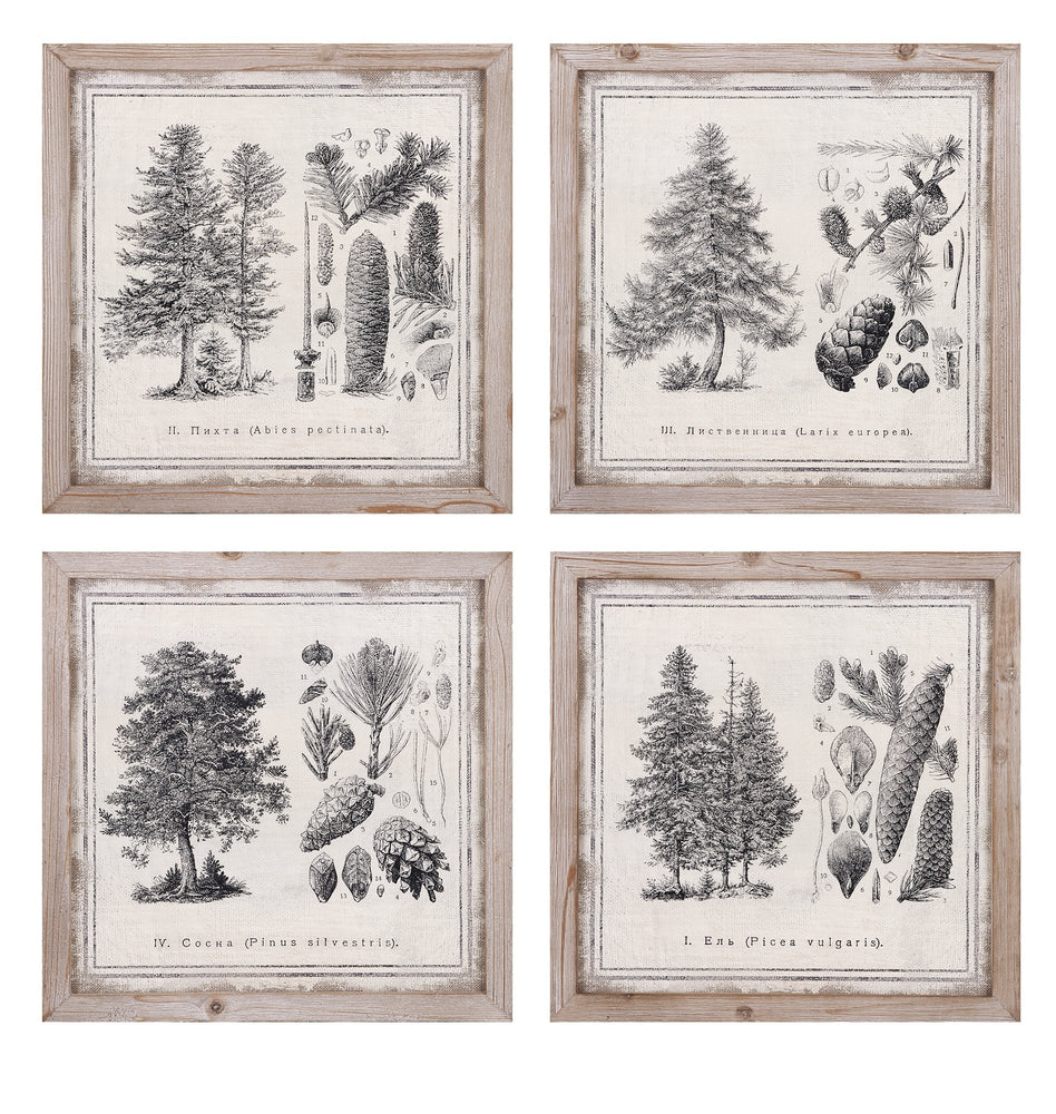 Conifer-Wall-Decor