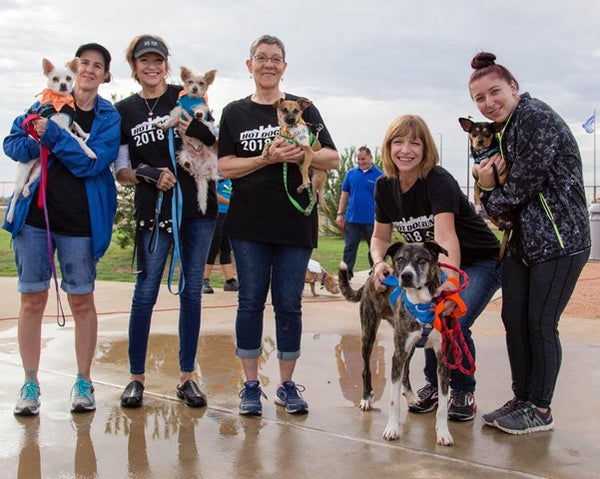 2019 Forever Home 5K & Pet Parade - October 5th