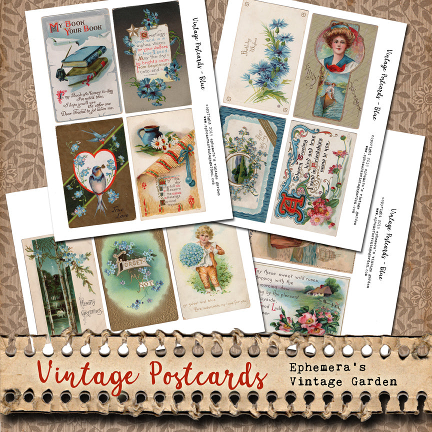 NEW! Vintage Flower Postcards - Blue