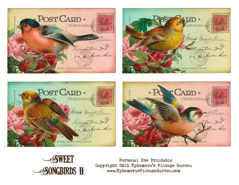 Sweet Songbirds Set