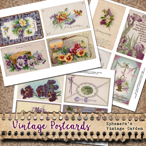 graphic about Printable Sets known as Flower Postcards - Clean Printable Sets Ephemeras Common