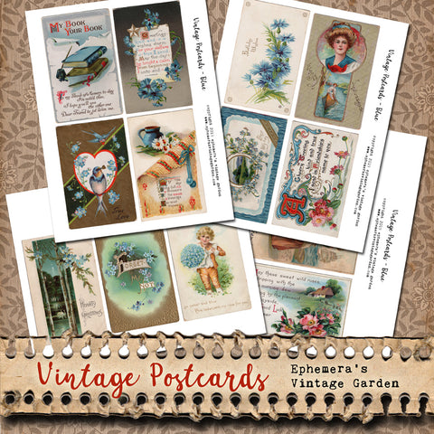 Flower Postcards - Blue